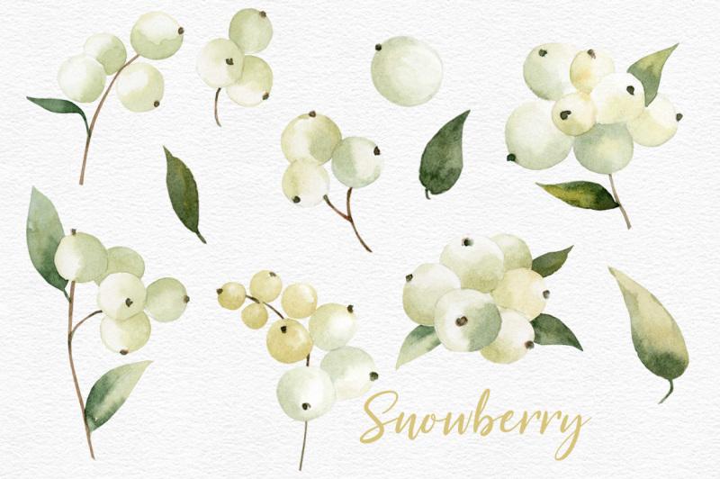 watercolor-snowberry-set