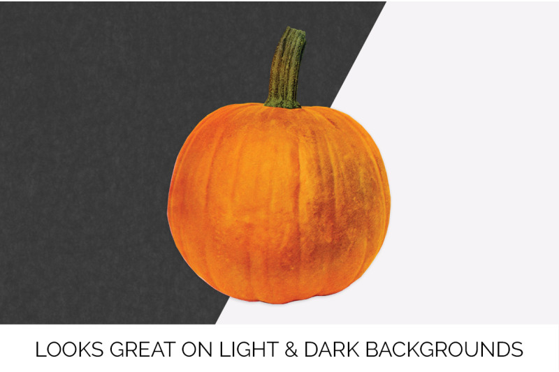 pumpkin-clipart