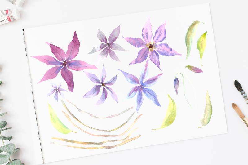 watercolor-clematis-clip-art-set-pattern-border-wreath