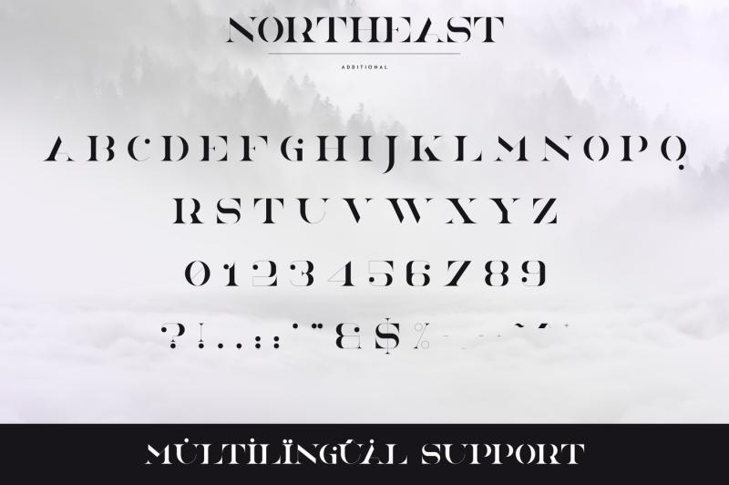 northeast-4-serif-fonts