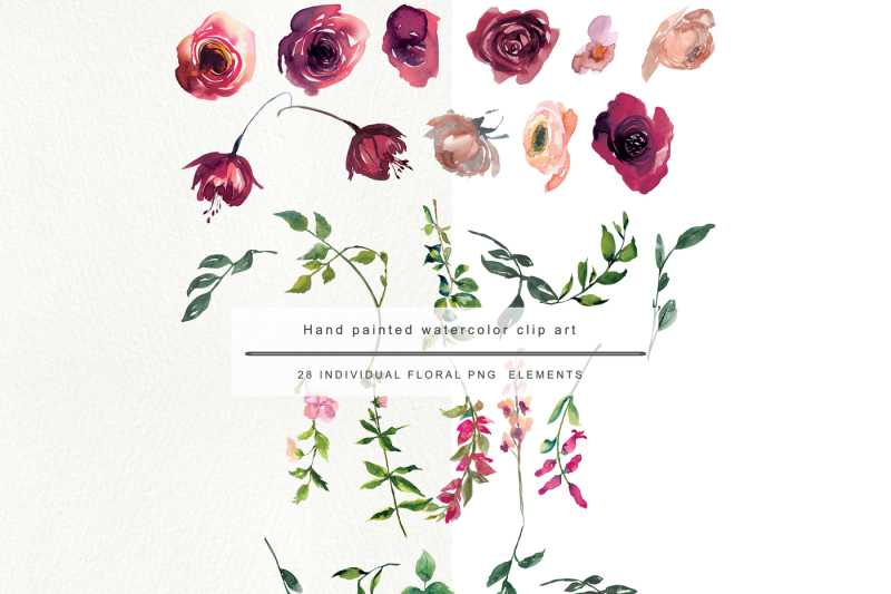 watercolor-maroon-rose-clipart-bordo-flower-clipart