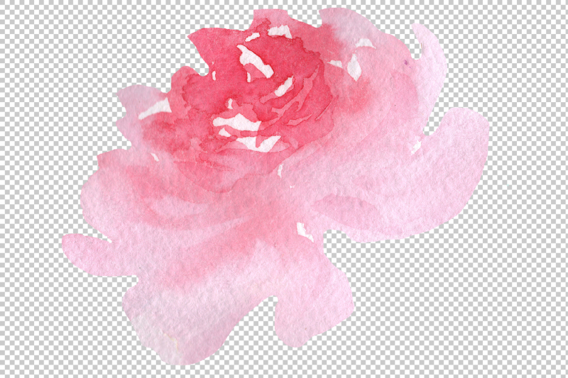 delicate-colorful-peony-png-watercolor-set