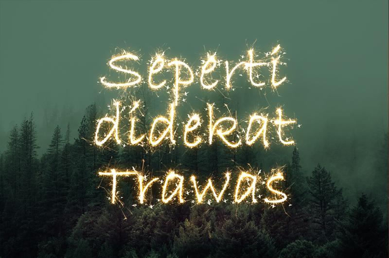 sparkler-text-effect-action