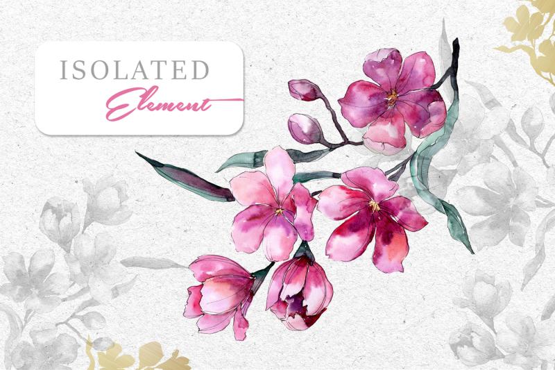 bouquet-of-pink-flower-png-watercolor-pack