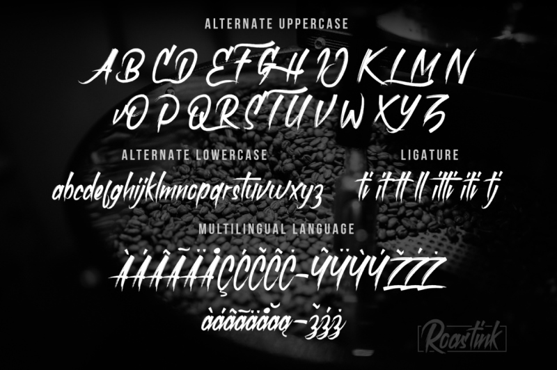 roastink-script-rough-brush-font
