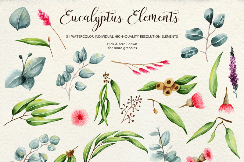 eucalyptus-collection-letter