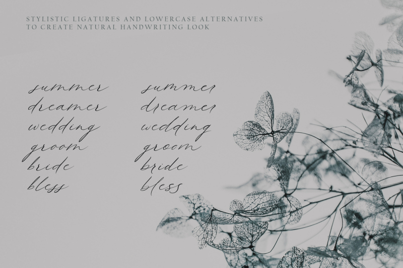queenly-handwritten-font