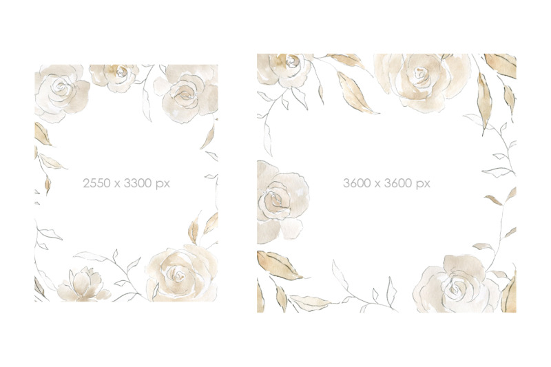 watercolor-amp-pencil-beige-flowers-roses-peonies-bouquets-frames