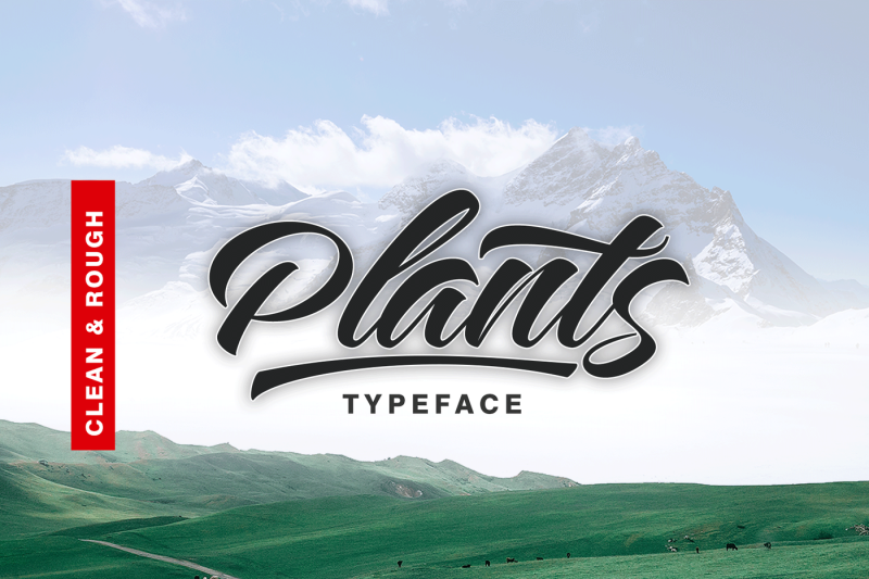 plants-clean-and-rough-style