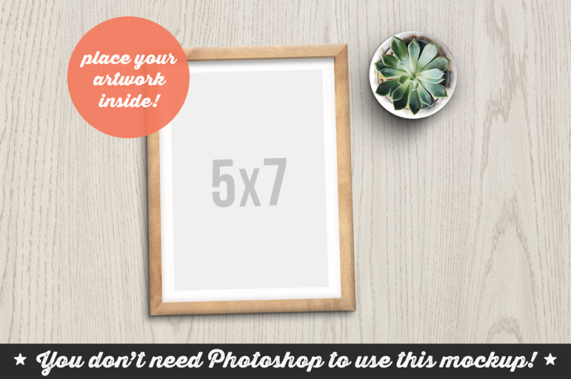 Free Non Photoshop Mockup Frame with Succulent (PSD Mockups)