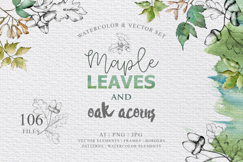 maple-leaves-and-oak-acorns-set-nbsp
