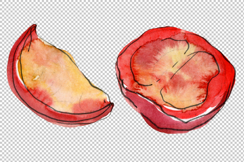 tasty-sandwich-png-watercolor-set-nbsp