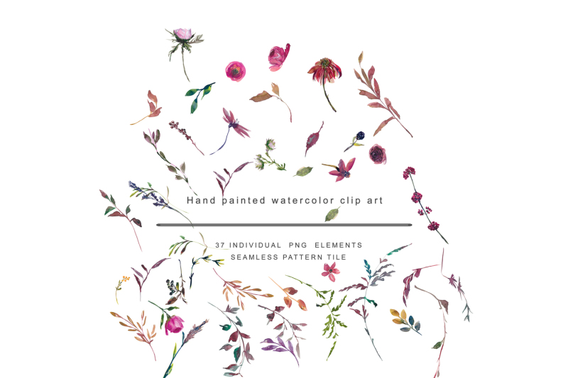 watercolor-fall-twigs-herbs-flowers-clipart