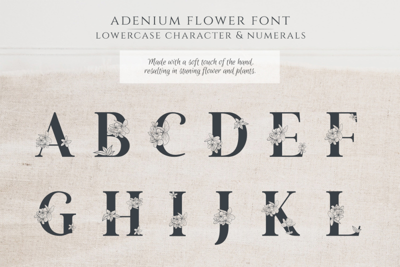 adenium-font-gold-and-rose-gold-foil