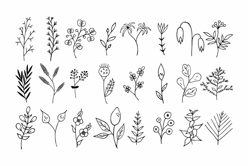 110-hand-drawn-floral-design-elements