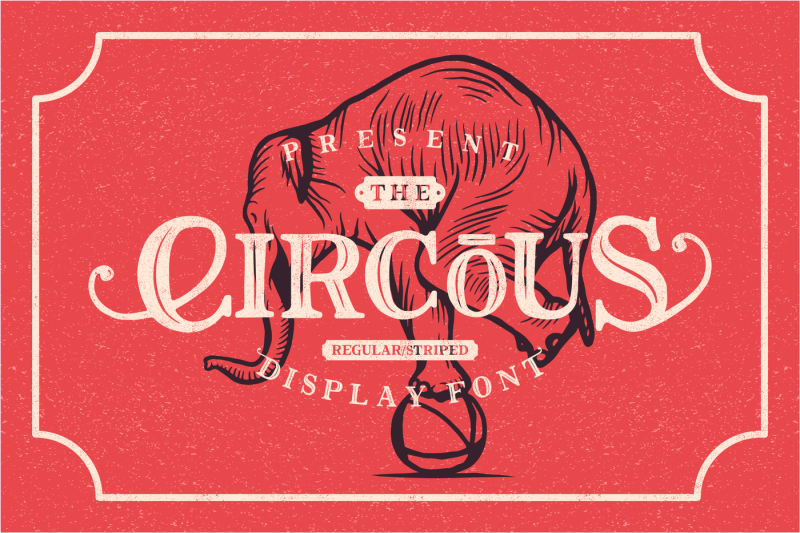 the-circous