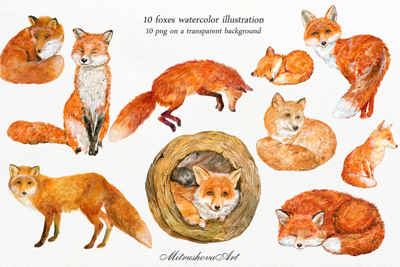 foxes-watercolor