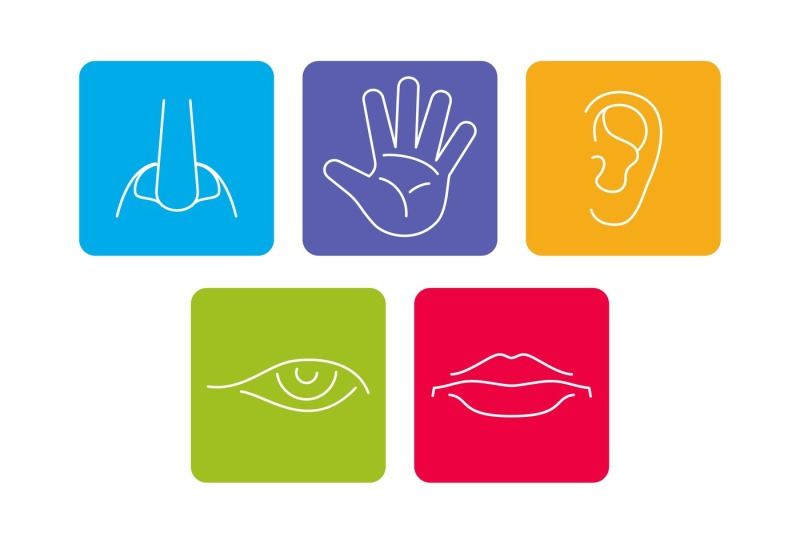 five-senses-vector-icons-set-isolated-white