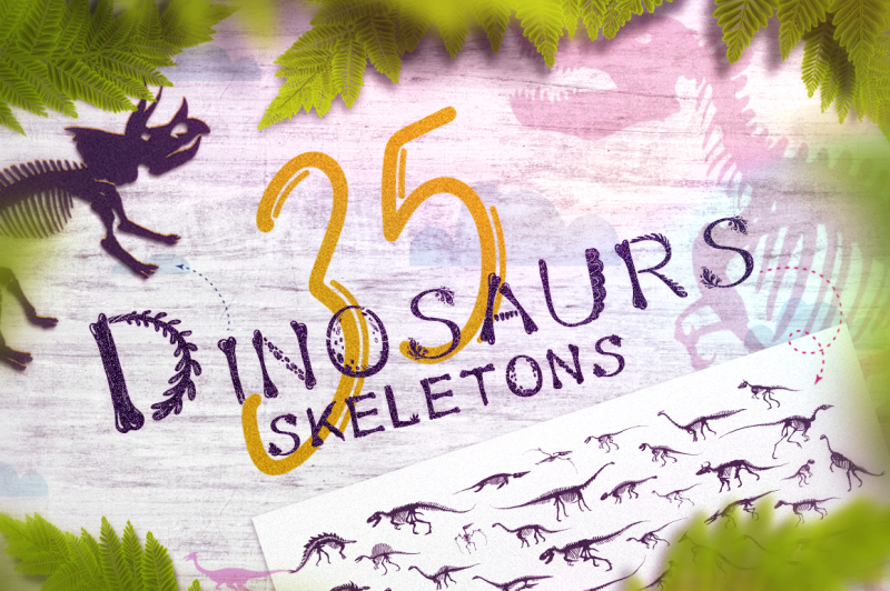 35-dinosaurs-skeletons-collection