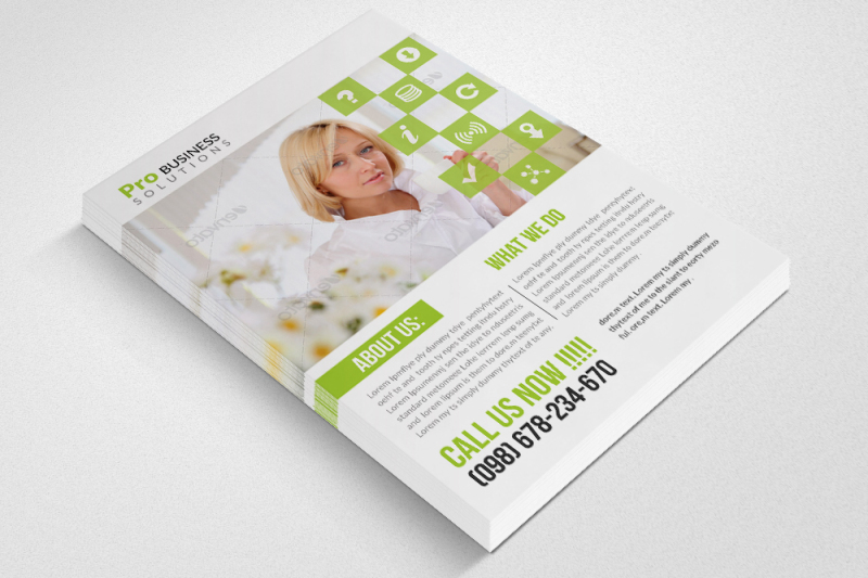 business-dealer-agency-flyers