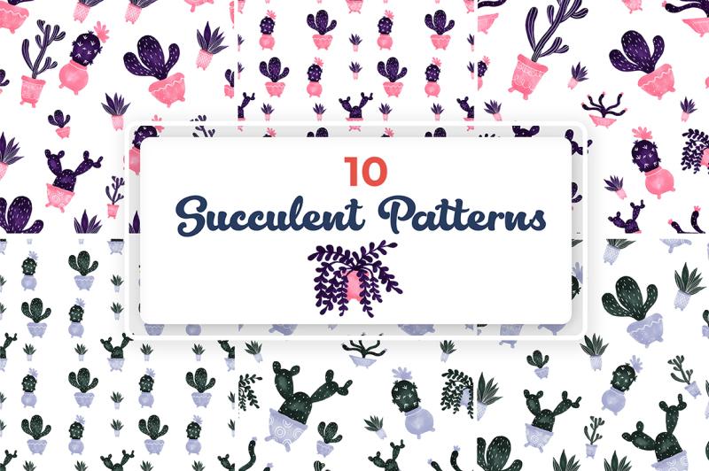 10-succulent-patterns