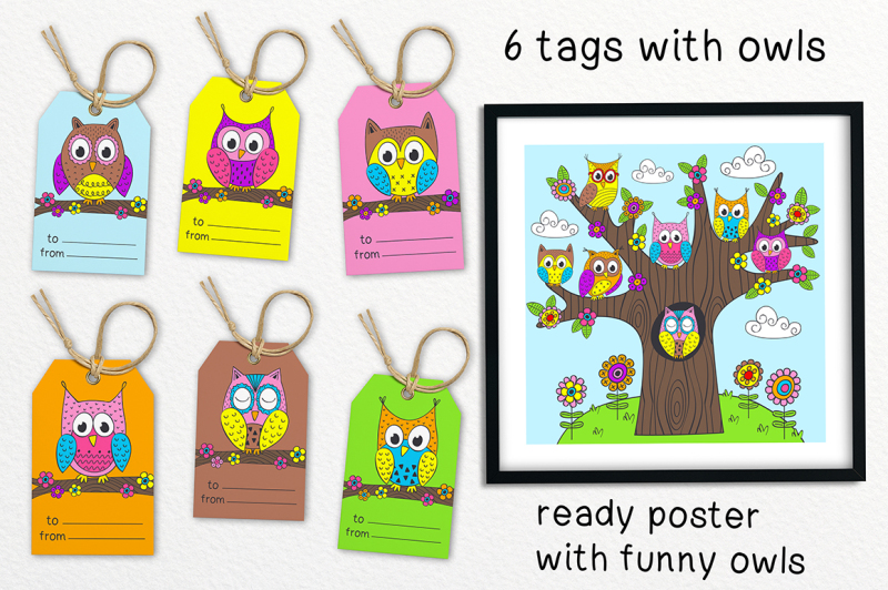 funny-owls-collection