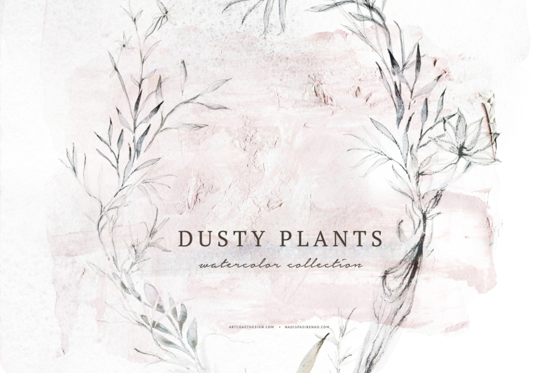 watercolor-dusty-plants