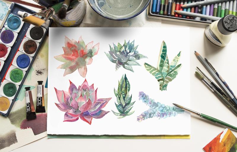 succulents-watercolor-graphics