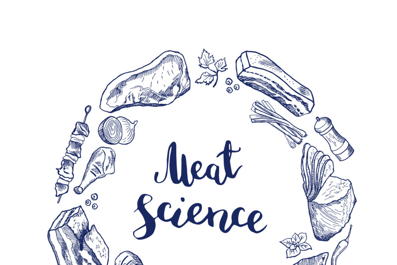 vector-hand-drawn-meat-elements