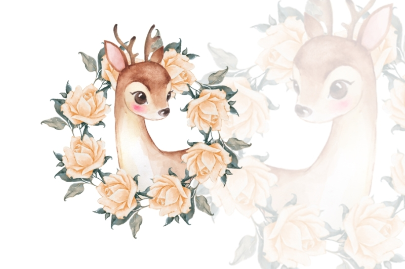 baby-deer-with-roses