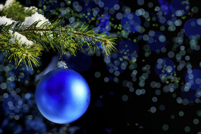 forest-christmas-tree-branch-with-blue-ornament