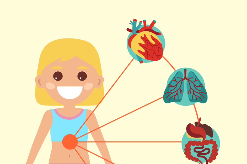 female-health-medical-poster-with-child-body-anatomy