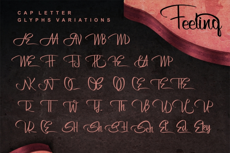 bertha-script-with-english-and-russian-letters-and-ligatures