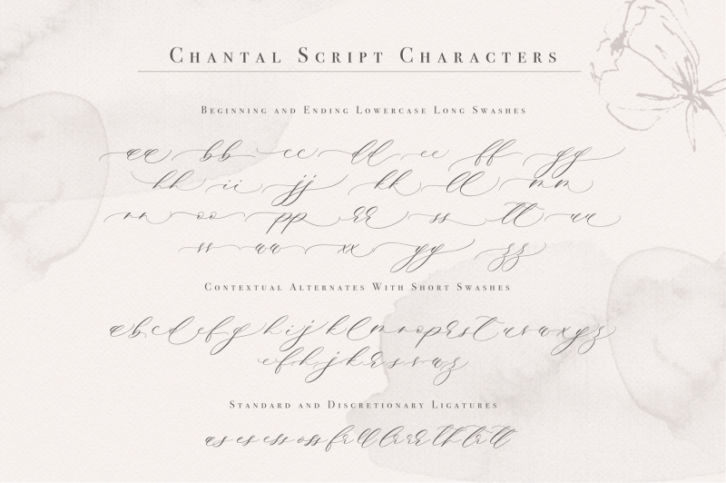 chantal-script