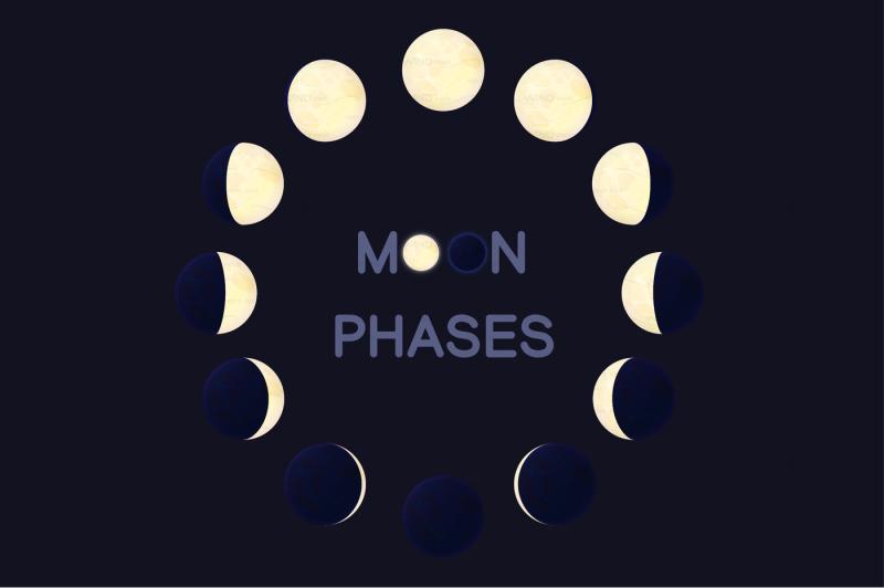 vector-cartoon-moon-phases