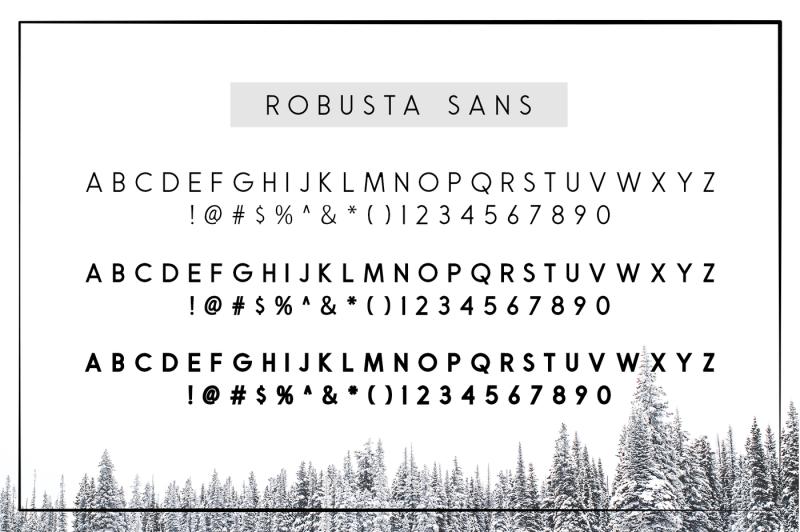 robusta-v-02