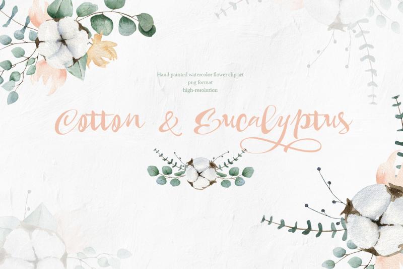 cotton-and-eucalyptus