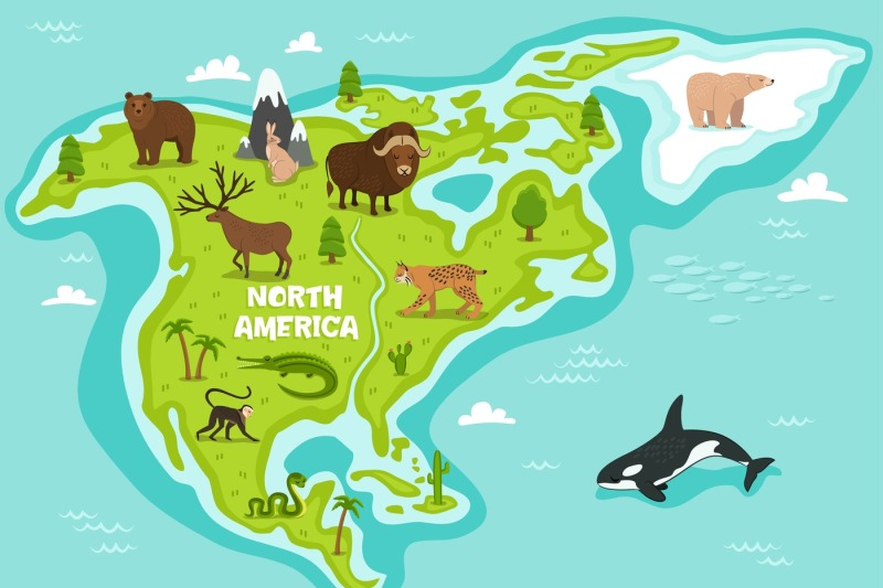 north-american-map-with-wildlife-animals-vector-illustration