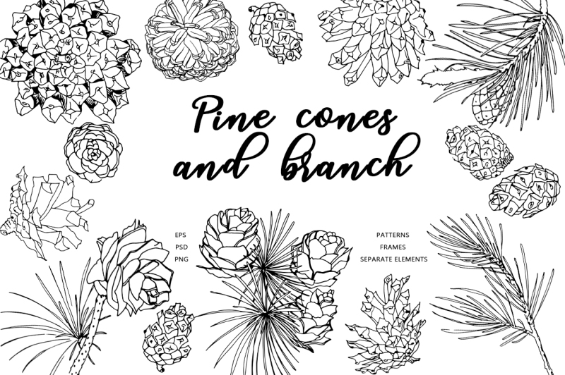 pine-cones-and-branches