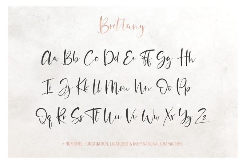 brettany-script-font