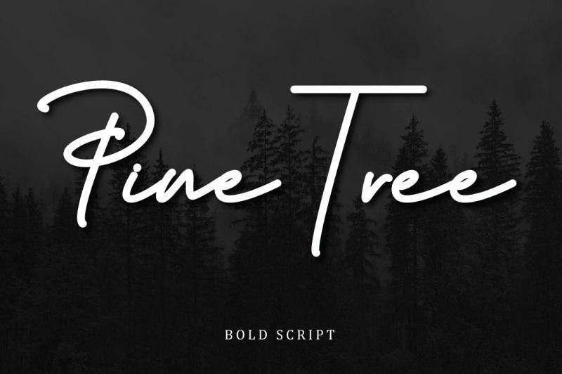 budapest-script-font-3-fonts