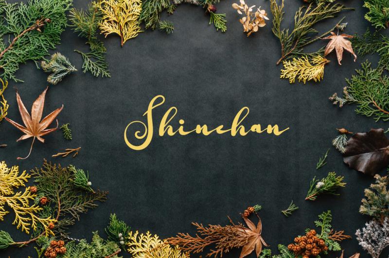 shuntip-jan-script-font-by-watercolor-floral-designs