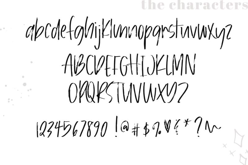 bloomy-chic-brush-font
