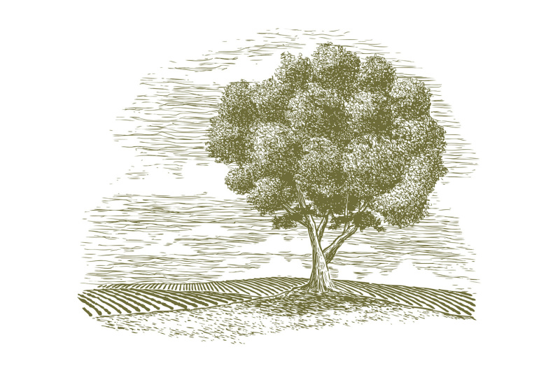woodcut-tree-and-countryside