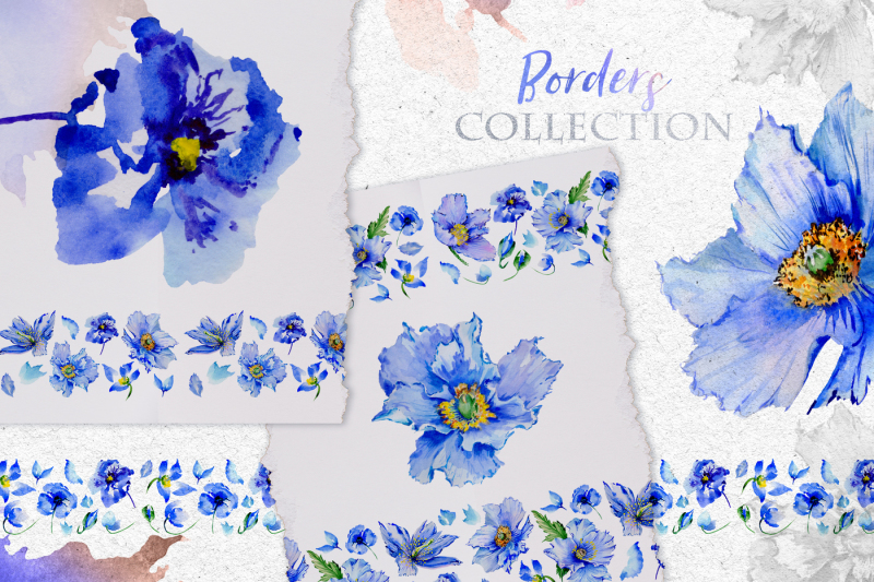 blue-poppies-watercolor-png