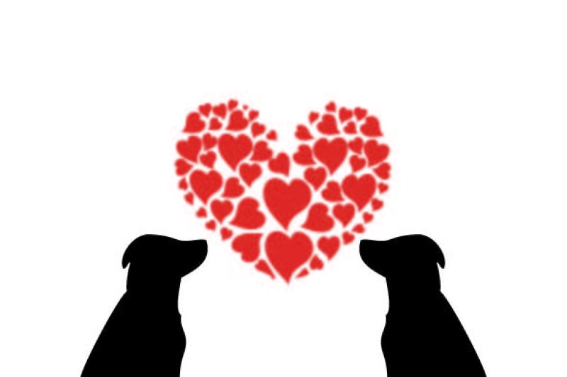 lab-love-digital-graphic-and-cut-file