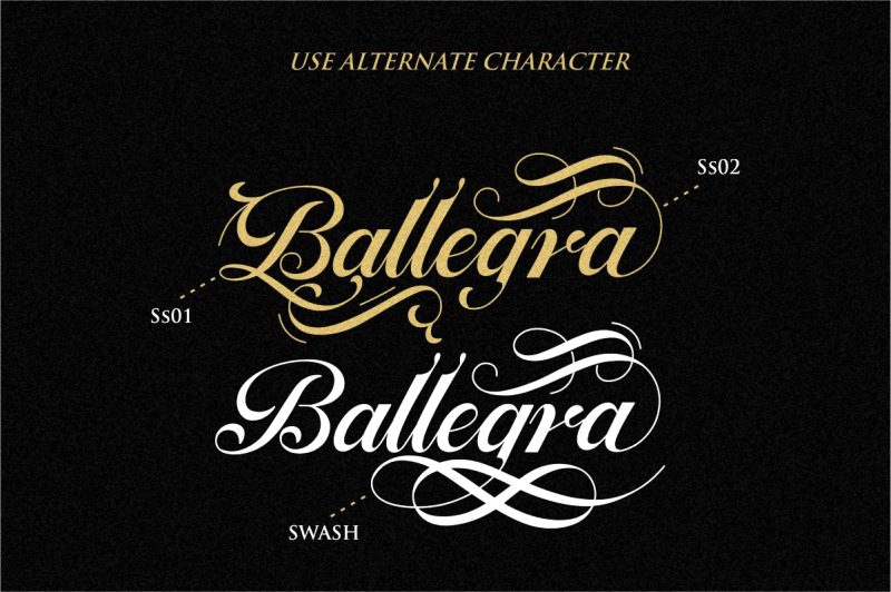 ballegra-solid-amp-outline-script