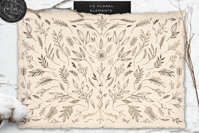 hand-drawn-farm-flora-illustrations