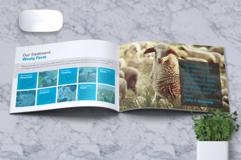sheep-farm-brochure-a5