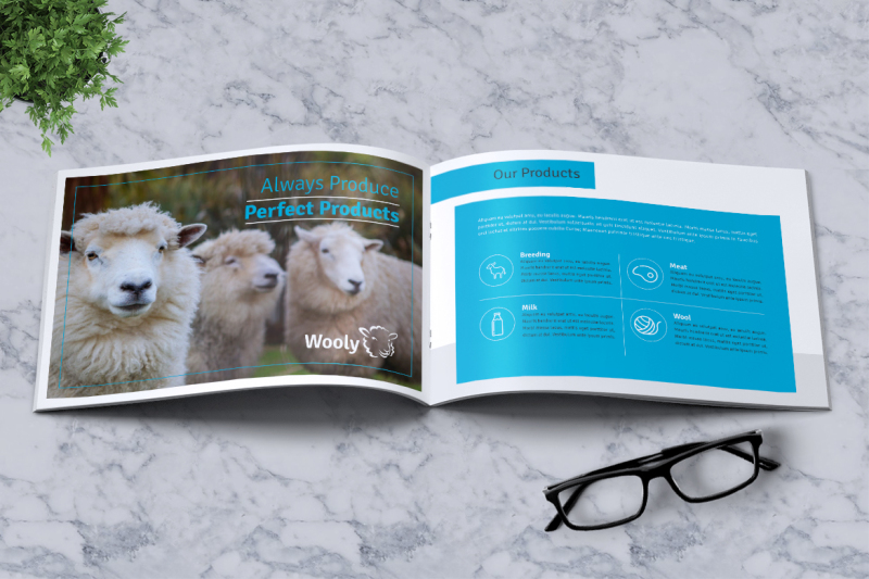 sheep-farm-brochure-a5